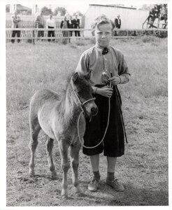 Animals ca. 1951-63 - Boy with Pony