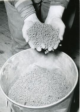 Poulty Demonstrations - Pelleted Feed