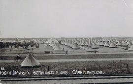 196th Western Universities Battalion - Camp Hughes